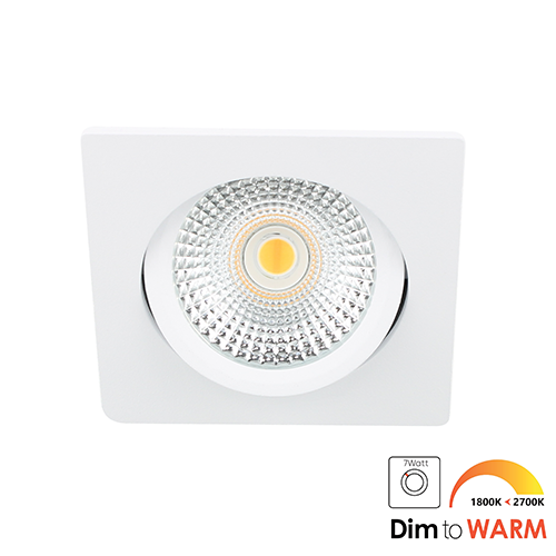 LED spot kantelbaar 5Watt vierkant WIT dimbaar DTW-2